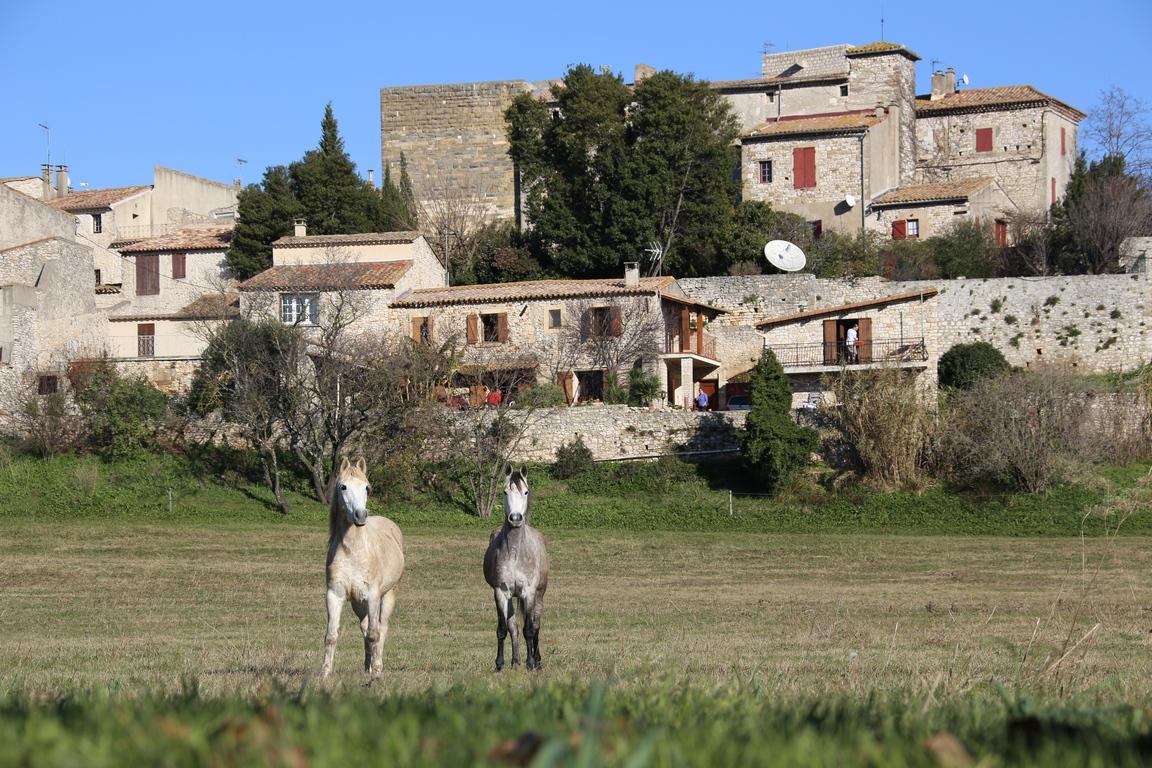village-de-la-rouviere-12-Copier