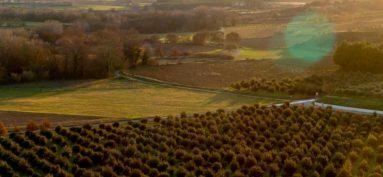 Règlement des zones Agricoles et Naturelles