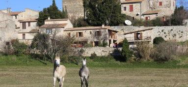 Paisible et charmant village typique du Gard